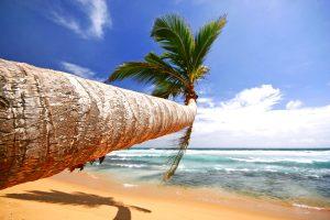 Нужна ли виза на Шри Ланку для россиян в 2020 году