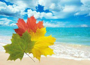 Где можно отдохнуть осенью 2021 за границей